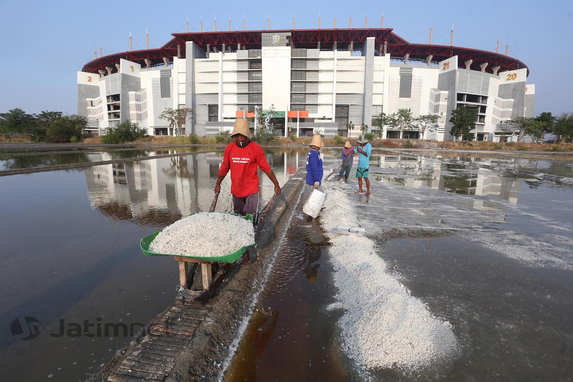 Indonesia Bisa Contoh India Terkait Tata Kelola Garam