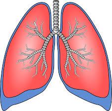 Polusi Udara Berkaitan dengan Kanker Paru