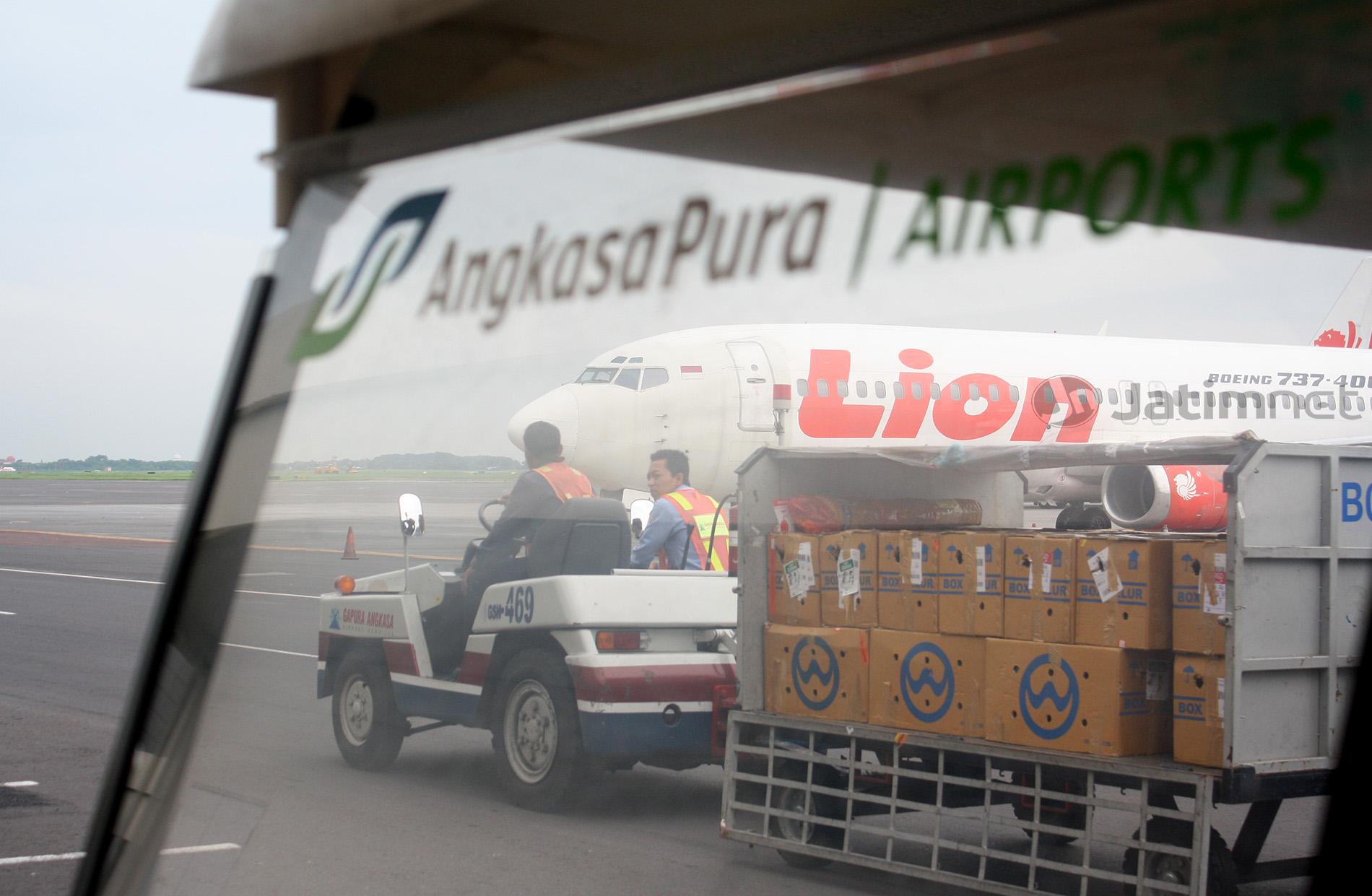 Pemeriksaan DNA Korban Lion JT 610 Selesai 23 November