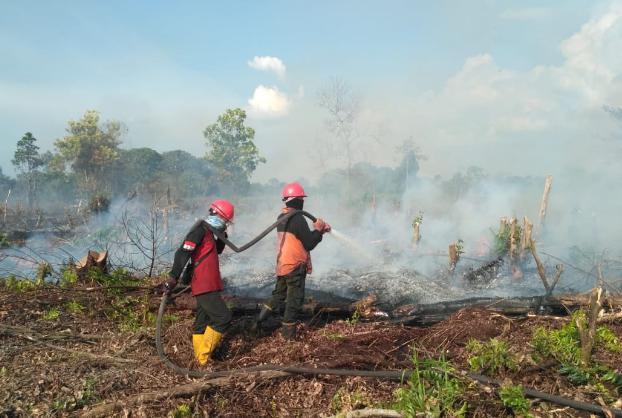Hingga April 2019, Kebakaran Lahan di Riau 2.912 Hektare