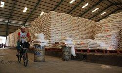 kemarau-panjang-pemerintah-diminta-antisipasi-lonjakan-harga-beras
