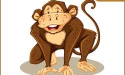 vaksin-ini-bisa-proteksi-manusia-dari-cacar-monyet