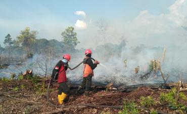 hingga-april-2019-kebakaran-lahan-di-riau-2-912-hektare
