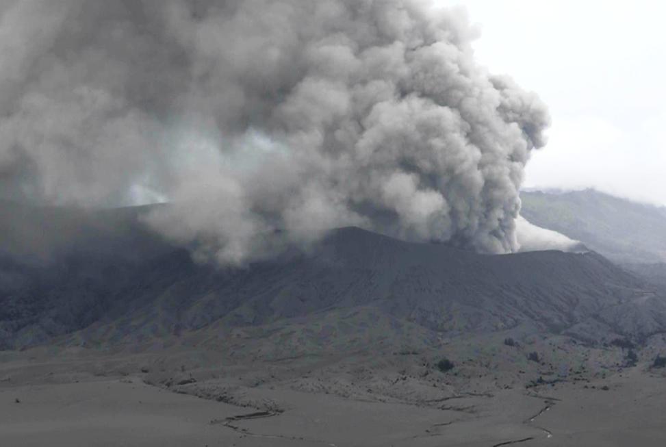 Semburan Abu Vulkanik Bromo Ganggu Ekosistem Satwa Liar