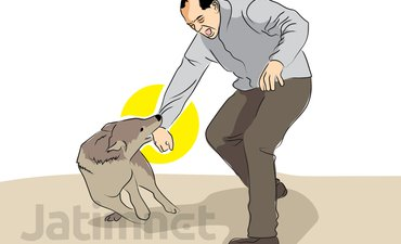 kementerian-kesehatan-tangani-klb-rabies-di-ntb
