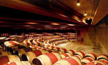 argentina-dan-uruguay-tempat-pembuatan-wine-terbak-di-dunia