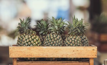 brg-dorong-ekspor-olahan-nanas-dari-lahan-gambut