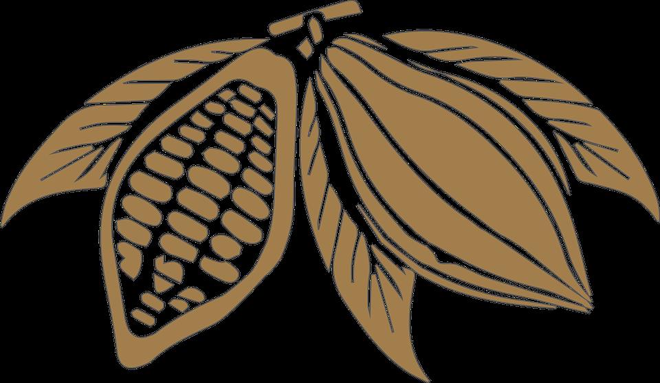 Menteri BUMN Resmikan Pabrik Cokelat di Banyuwangi