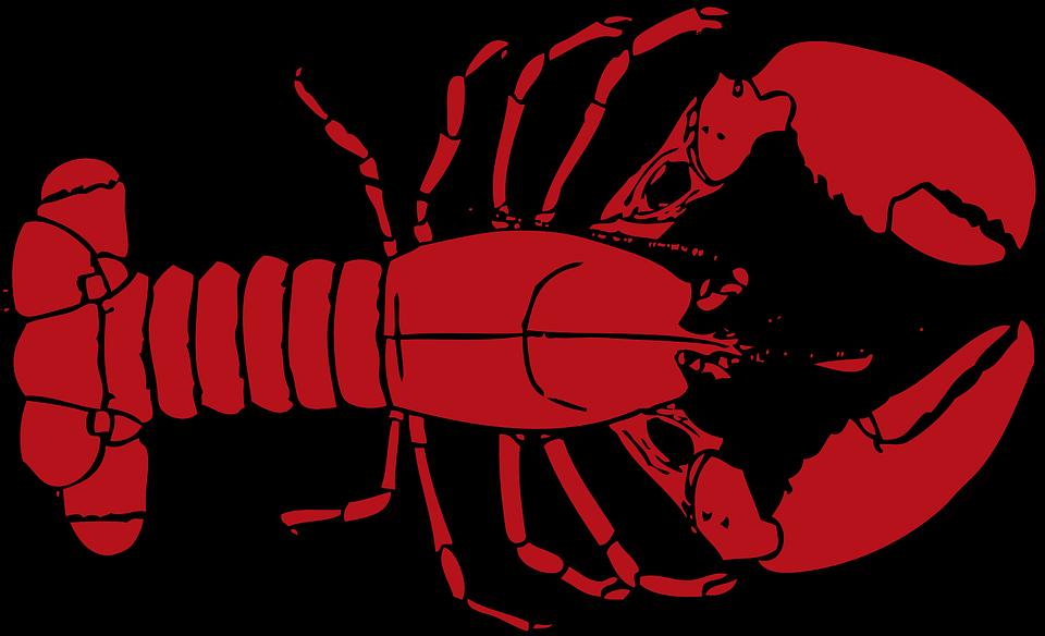 Pemerintah Gagalkan Penyelundupan Benih Lobster senilai Rp 37 Miliar